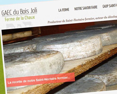 Vignette GAEC du Bois Joli - Producteur de Saint-Nectaire fermier